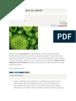 Bacterias Para La Salud(ensayo)