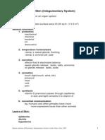 Integumentary System[1]