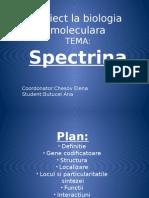 PROIECT BIOLOGIE MOLECULARA