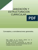 Organización y Estructuracion Curricular