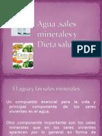 Grupo Cta Agua y Sales Dieta