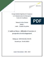 L_audit Au Maroc Difficultés D_exercices Et Perspectives de Développement - Aspects Pratiques de l