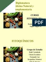 Fitoquimicos-Exposición.ppt
