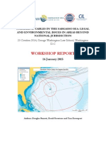 Submarine Cables in the Sargasso Sea WS Final Report