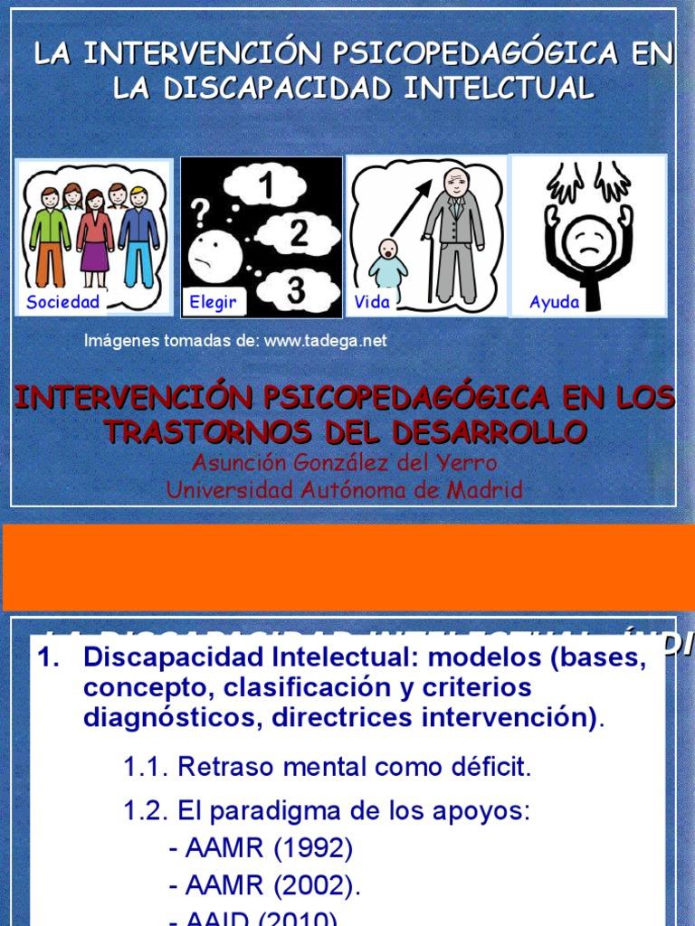 concepto de discapacidad intelectual 38cbb627513