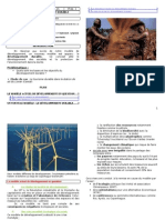 Chp 1 . Les enjeux du développement durable - Copie