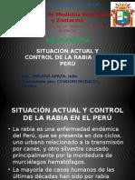Salud Publica Rabia