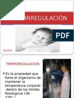 termorregulacinyazmin2-121017224852-phpapp01