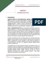 R.E SAN SEBASTIAN SUYO.pdf