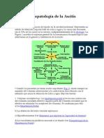 Fisiopatología de La Ascitis