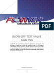 Blow-Off Test Valve Analysis
