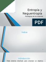 Entropía y Neguentropía