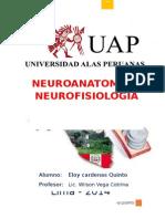 Neuroanatomia y Fisiolgia