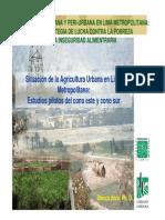 Agricultura Urbana en Lima Metropolitana - Blanca Arce.pdf
