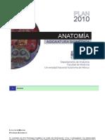 Plan Anatomia UNAM