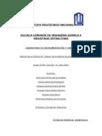 Reporte No. 1_Manejo de La Balanza de Pesos Muertos (1)