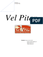 Vel Pitar- MCA, An 2-2011-2012 C. Carausu - C. Stefan - A. Vrabie .