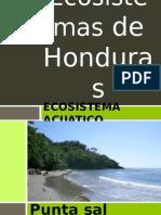ecosistemasdehonduras-131120032429-phpapp02