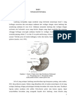 Case Gastritis