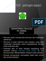 FISIOLOGI PENGECAPAN.ppt