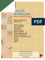 Makalah Biokimia Siklus Nitrogen