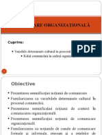 Curs1.2 Comunicare Organizationala