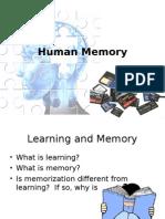 2 Human Memory Handouts