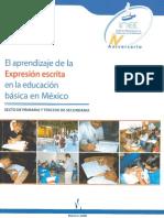 Prueba de Escritura Mexico