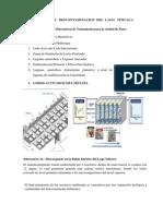 ALTERNATIVAS   DE   DESCONTAMINACION  DEL  LAGO   TITICACA.pdf
