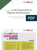 Proyectos de Capacitación en Negocios Internacionales