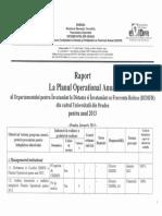 Raport Plan Operational 2013