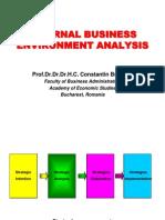 BS_L06_Internal Business Environment Analysis