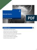 Molecular Genetics Handout (1)
