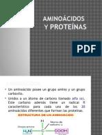 groups ionizables amino acidos para adelgazar