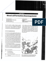 Blood Cell Formation