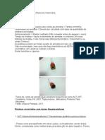 Bioquímica Sérica Em Medicina Veterinária