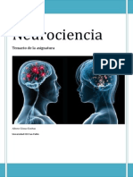 Neurociencia. Cerebelo