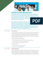 Web Chages Enterprise Risk Management Profile_tcm3171-556690