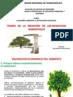 Teoria de La Medicion de Beneficios Ambientales