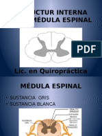 Clase 3 Estructura Interna de La Médula Espinal