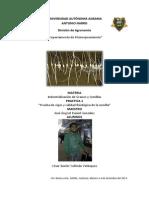 PRACTICA DE INDUSTRIALIZACIÓN DE GRANOS Y SEMILLAS 1.pdf