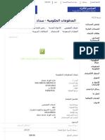 Visa Spring 2013