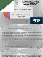 EStablishing Strategic Pay Plans & Labor Relations