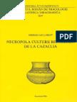 Agulnicov Serghei, Necropola Culturii Belozerka de La Cazaclia. București 1996