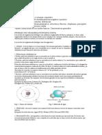 Biologia Nivel de Organizacion y Celulas