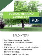 euskal herriko zuhaitzak