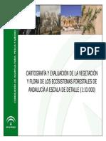 Vegetacion10000 Canal Publico
