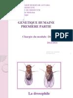 Cours de genétique humaine-1 -2014.pptx