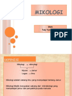 Power Point Mikologi