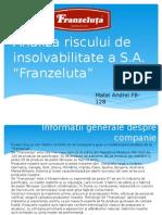 Analiza Riscului de Insolvabilitate Franzeluta